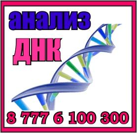 analiz dnk 7776100300