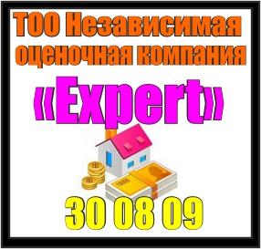 ocenochnaya kompaniya EXPERT 300809
