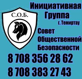 Совет общественной безопасности